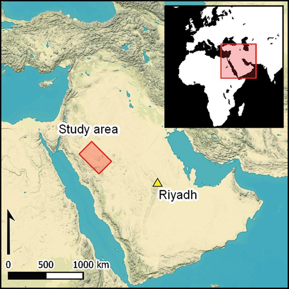 Suudi Arabistan'daki 7 bin yıllık yapılar: Stonehenge'den daha eski - 4