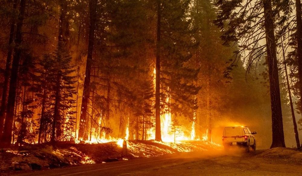 California'da orman yangınları evleri küle çevirdi - 2