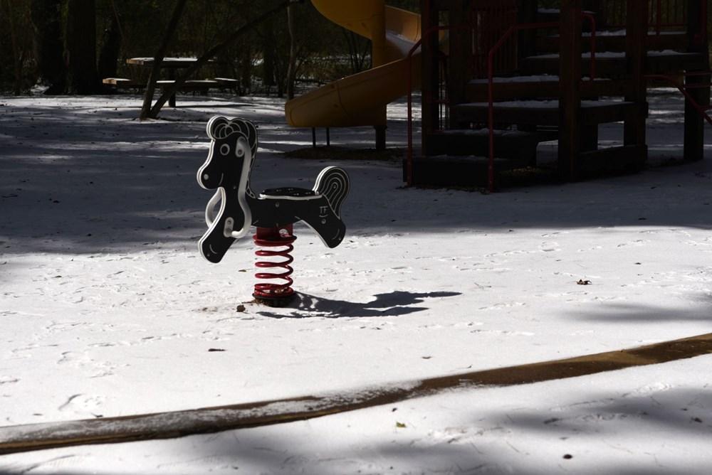 ABD'de kutup soğuklarıyla mücadele: 20 kişi yaşamını yitirdi - 12