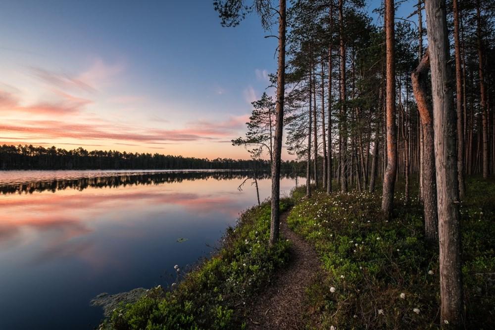 Dünyanın en mutlu ülkesi Finlandiya: Olağanüstü sayıda yabancı işçiye ihtiyacımız var - 8