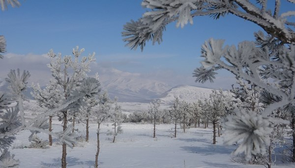 """<span>Çıldır'da doyumsuz kar manzarası</span>"""" /></p> <p>Ardahan'ınÇıldırilçesinde yüksek kesimlerde etkili olan kar yağışı bölgeyi beyaz örtüyle kaplarken, görsel bir şölen oluştu.</p> </div></section></main>  </div> <footer id="""