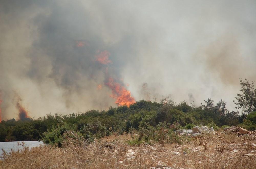 Antalya, Adana, Mersin, Aydın, Muğla, Osmaniye, Kayseri ve Manisa'da orman yangınları - 33