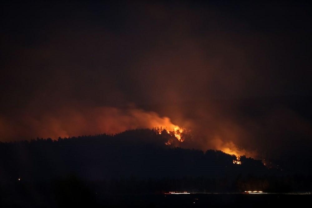 Gelibolu Yarımadası'nda orman yangınında son durum - 6