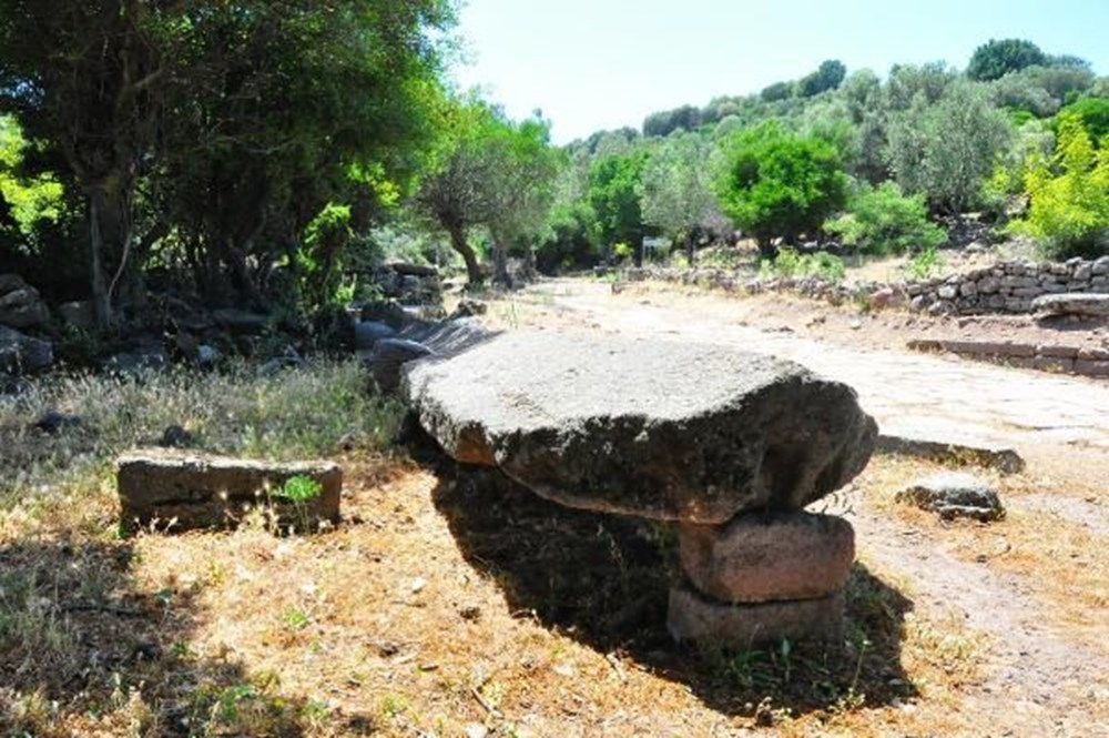 Aigai Antik Kenti'nde 3 bin mezar: Ortalama yaşam 40-45 yıl - 17