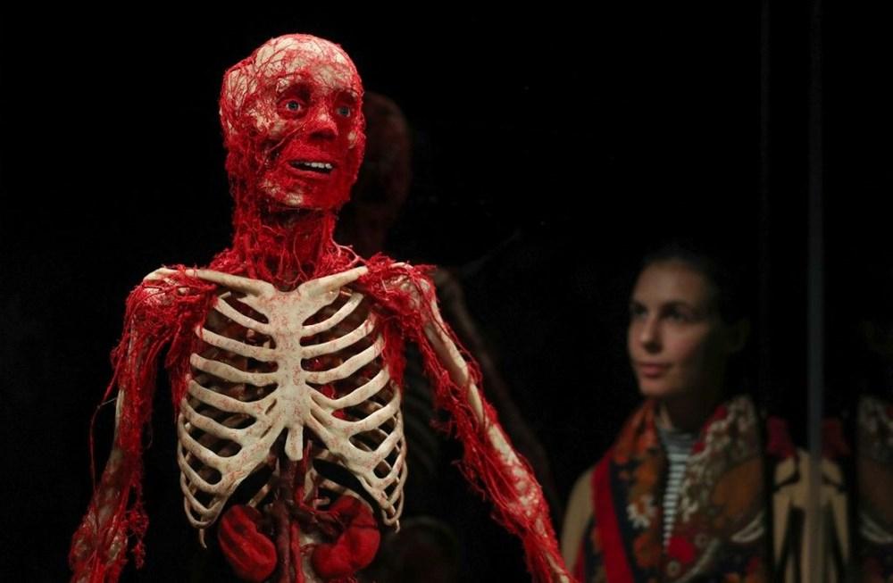 Lordlar Kamarası'ndan kadavra sergisine tepki - 4