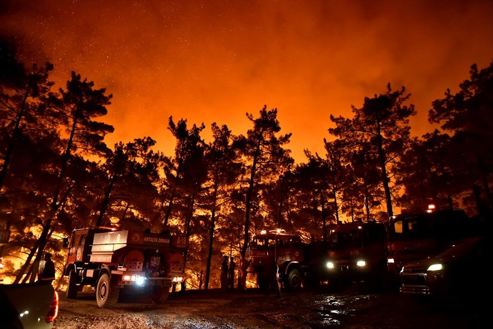 Hatay ve Mersin'de orman yangını - 2