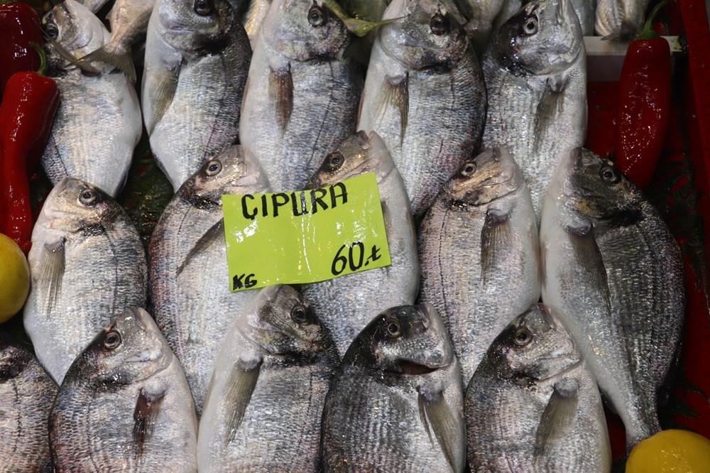 Müsilaj balıklarda zehir etkisi yaratır mı? Uzmanı yanıtladı - 5