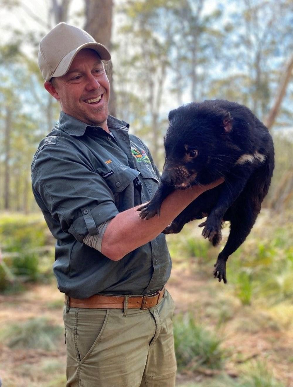 Tazmanya canavarı 3 bin yıl sonra Avustralya ana karasında doğdu: Yavru Joey dünyanın geleceğine dair umutları artırdı - 5