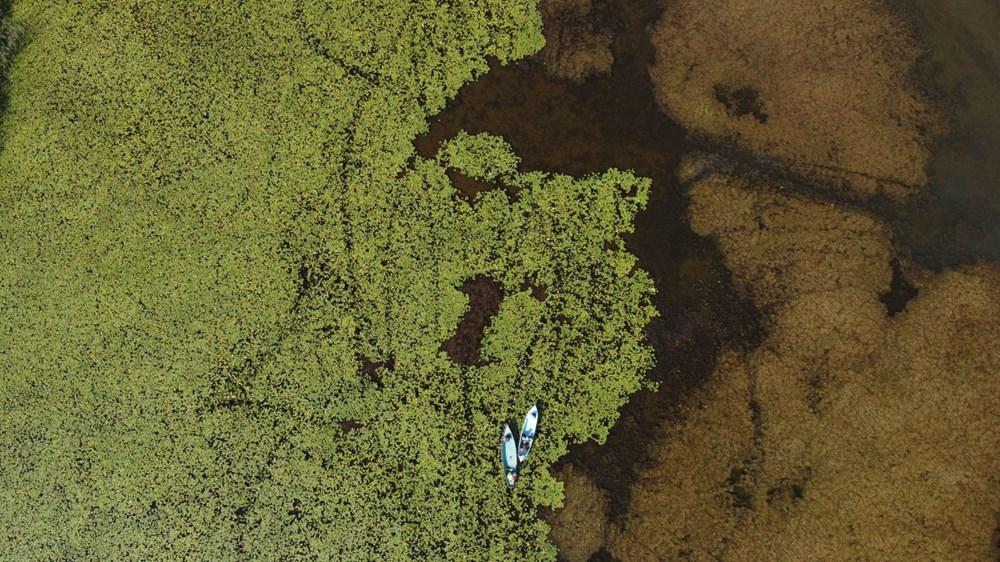 Türkiye'nin en büyük nilüfer bahçesi: Beyşehir Gölü - 13