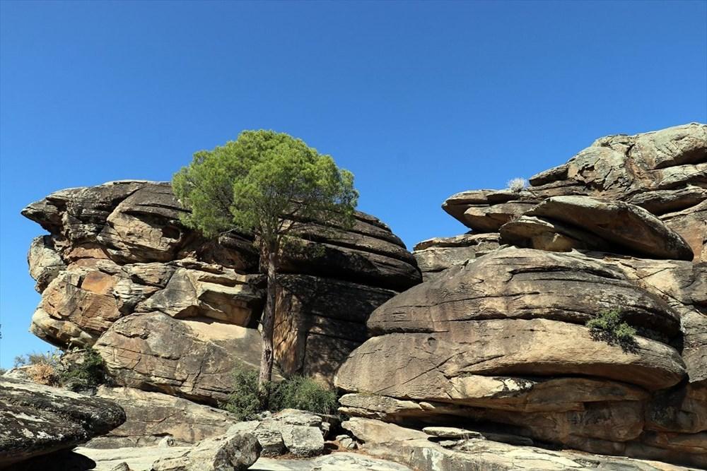 Latmos'daki kaya resimleri, dünyaya kardeşlik mesajıyla tanıtılacak - 3