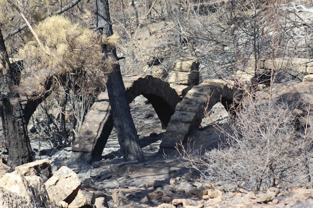 Yangın Lyrbe'yi de vurdu: Antik kent küle döndü - 2