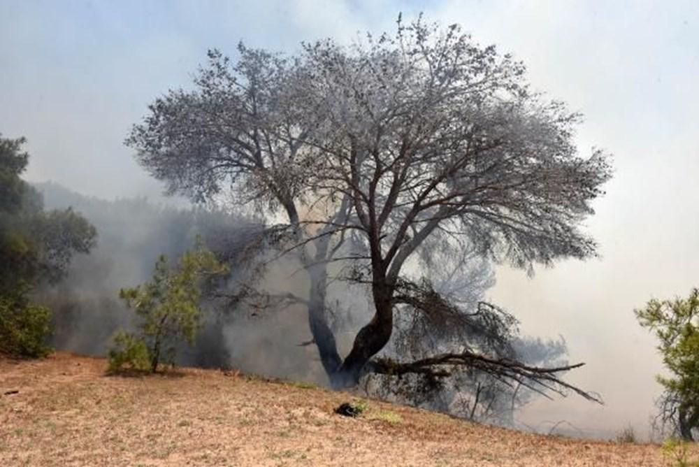 Antalya'da korkutan yangın: Kum taşıdılar - 1