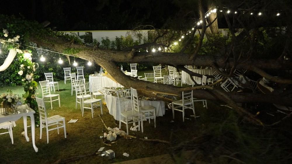 Antalya'da kır düğününde'ağaç' devrildi: 1 ölü - 2