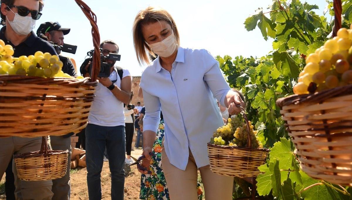 49. Uluslararası Ürgüp Bağ Bozumu ve Balon Festivali üzüm hasadı ile sona erdi