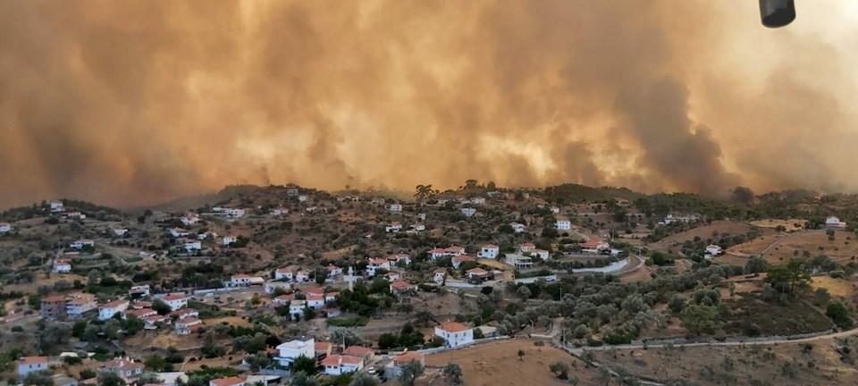 Milas Mazı'daki yangında ortaya bu korkunç görüntü çıktı.