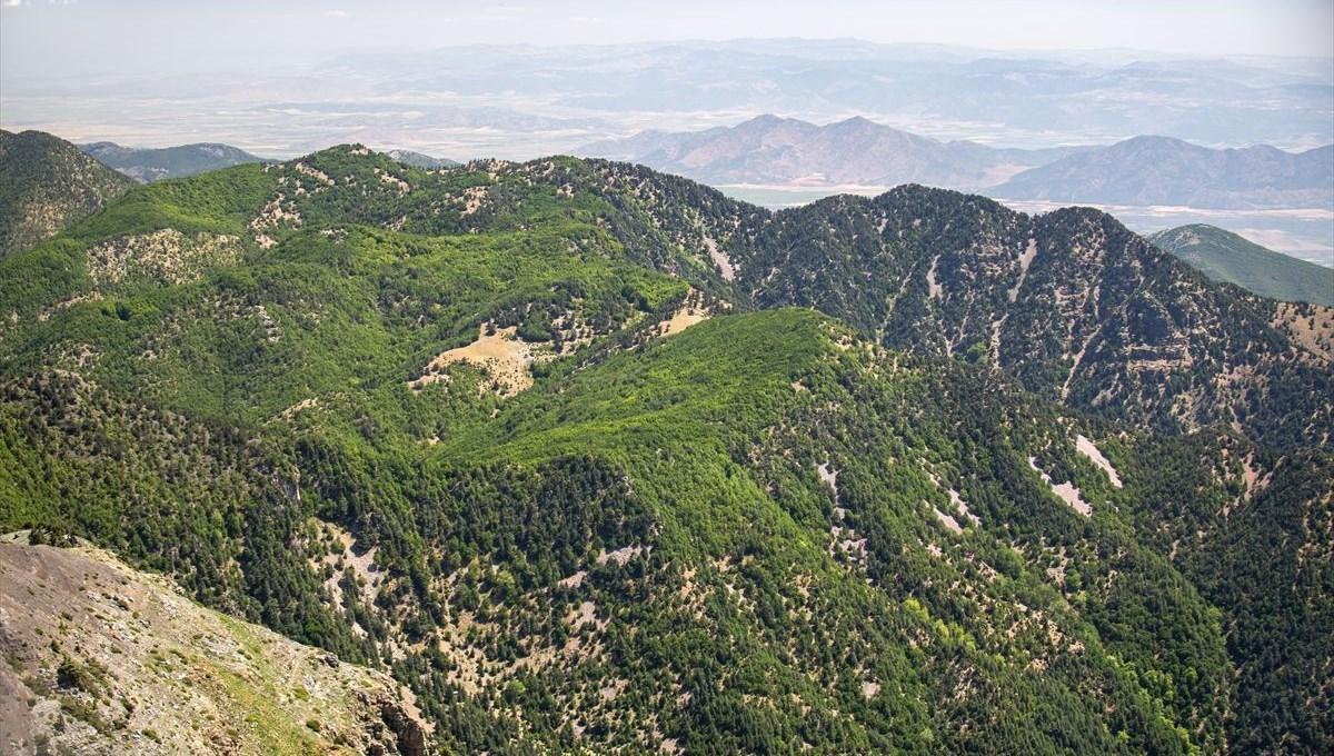 Doğaseverlerin yeni gözdesi: Amanos Dağları