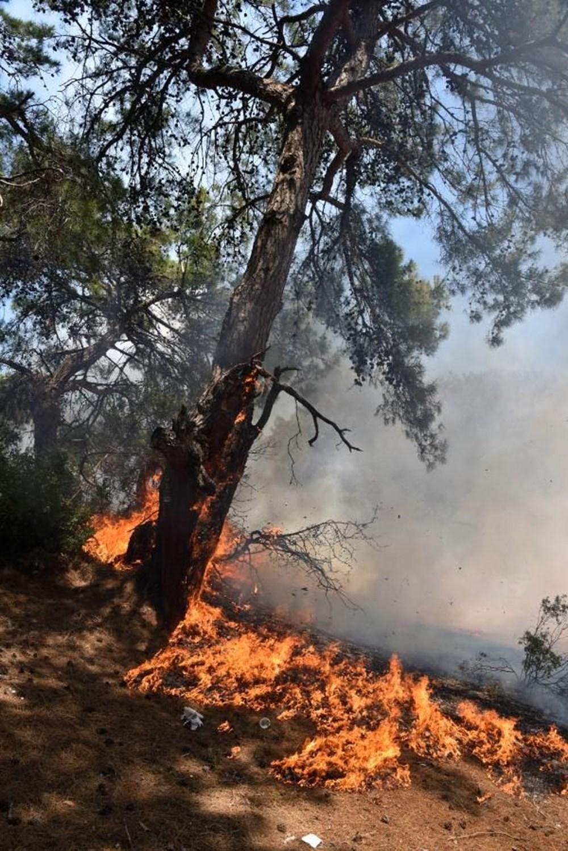Antalya'da korkutan yangın: Kum taşıdılar - 9