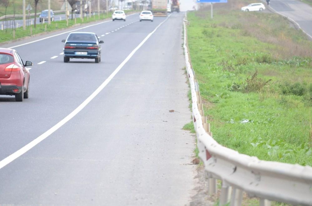 İstanbul yolunu fareler bastı - 2