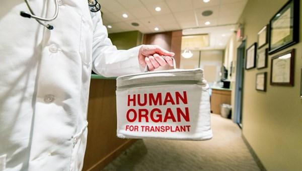 """""""Organ naklinde öncelik kadavradan organ temin etmek olmalı"""""""