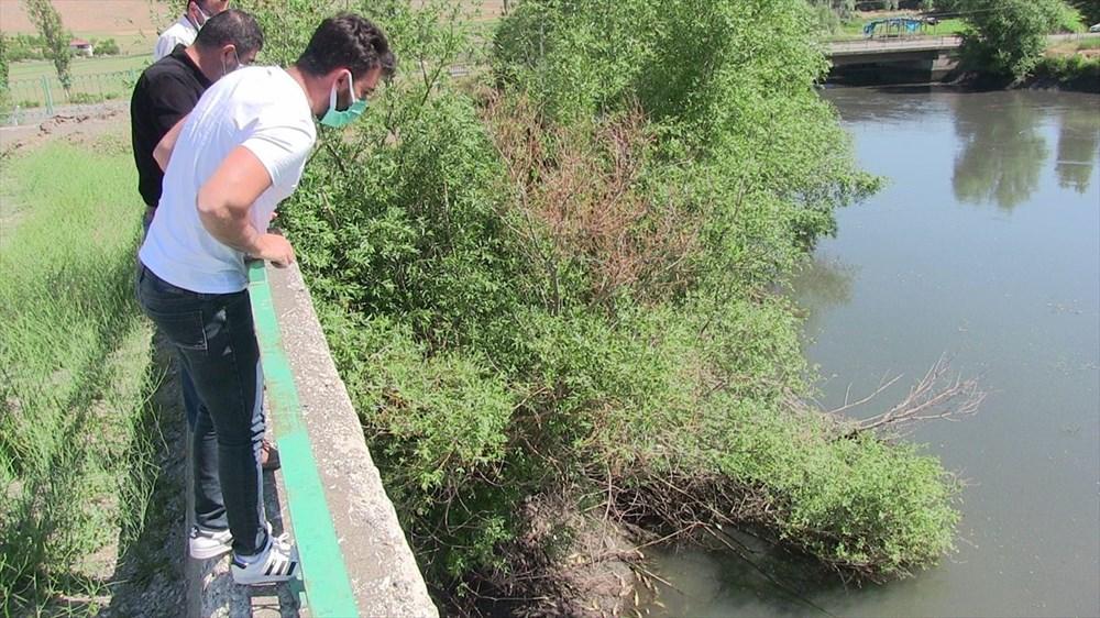 Kahramanmaraş'ta meydana gelen balık ölümlerinin nedeni araştırılıyor - 2