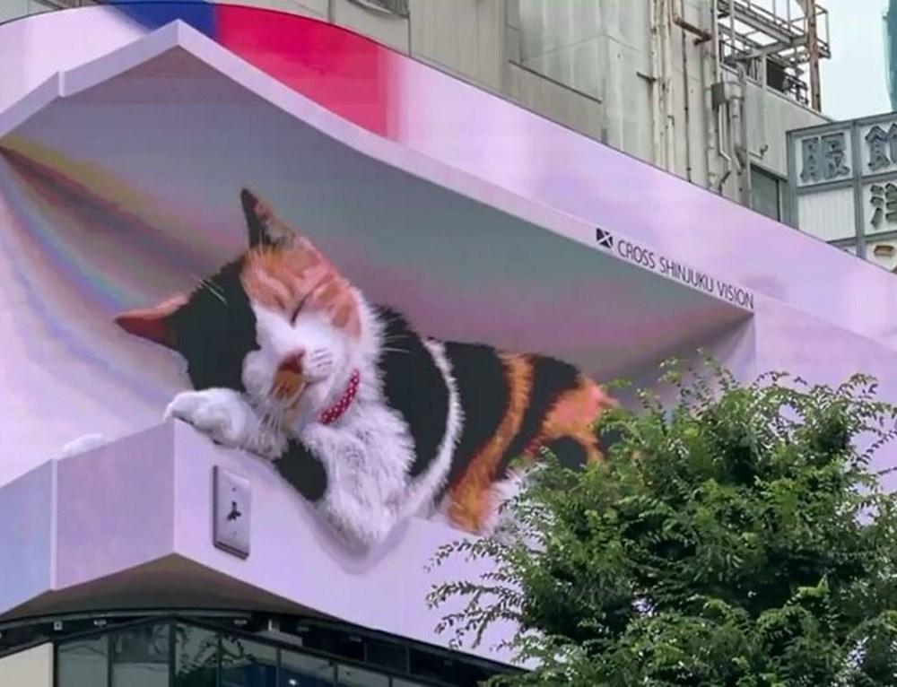 Tokyo'nun yeni misafiri 3 boyutlu kedi: Şehri izliyor ve halkı selamlıyor - 4