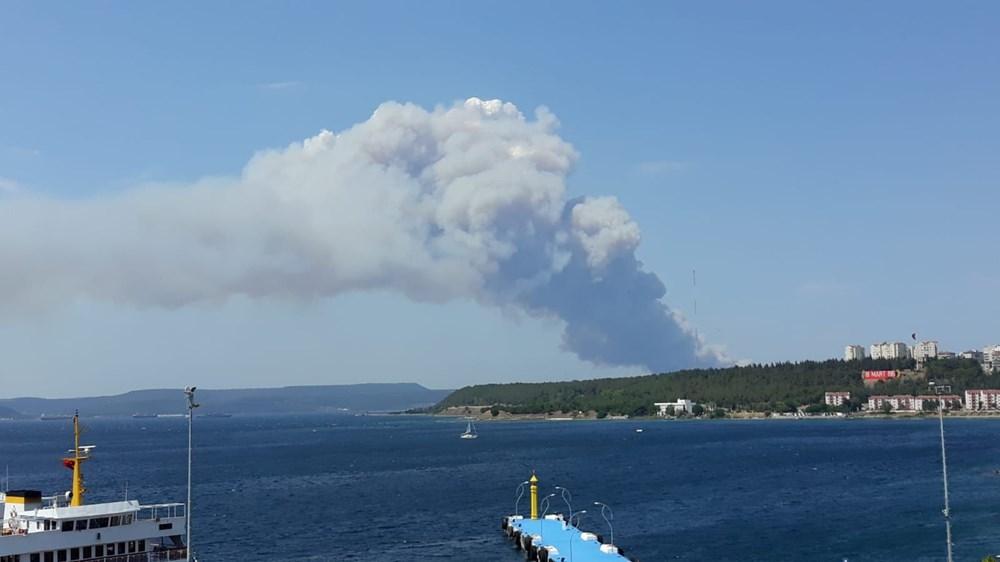 Gelibolu Yarımadası'nda orman yangınında son durum - 2