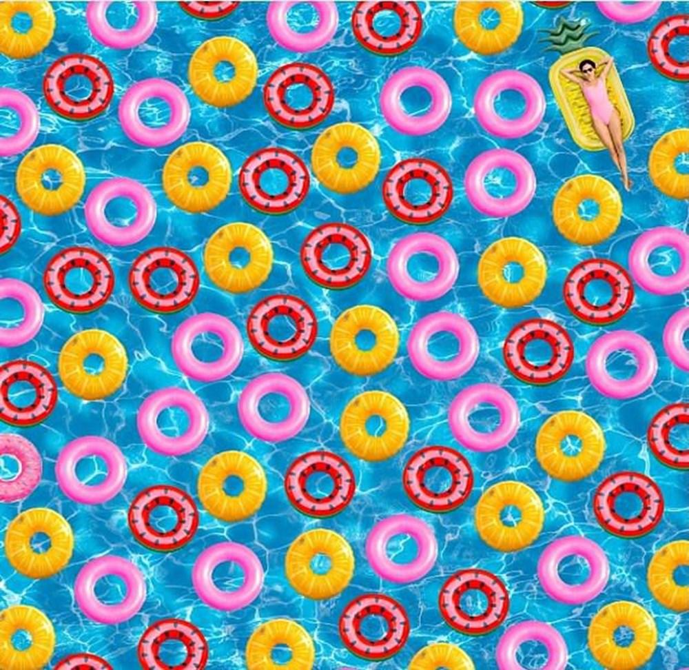 Dikkat testi: Resimdeki dört yapraklı yoncayı bulabilir misiniz? - 8