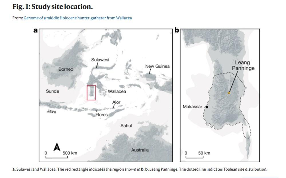 Endonezya'da 7 bin 200 yıl önce ölen kadının DNA örneği keşfedildi - 2