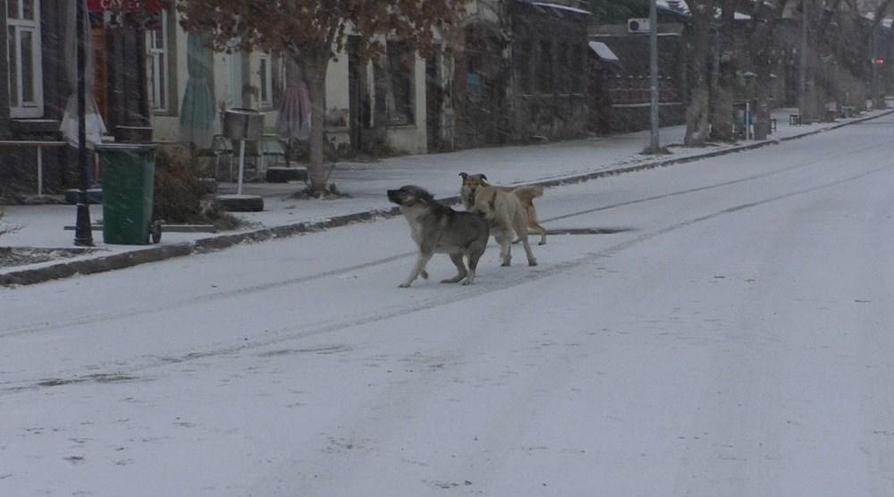 Kars merkeze mevsimin ilk karı düştü - 5