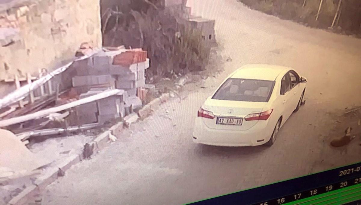 Konya'da yavru köpeği ezen sürücü yoluna devam etti