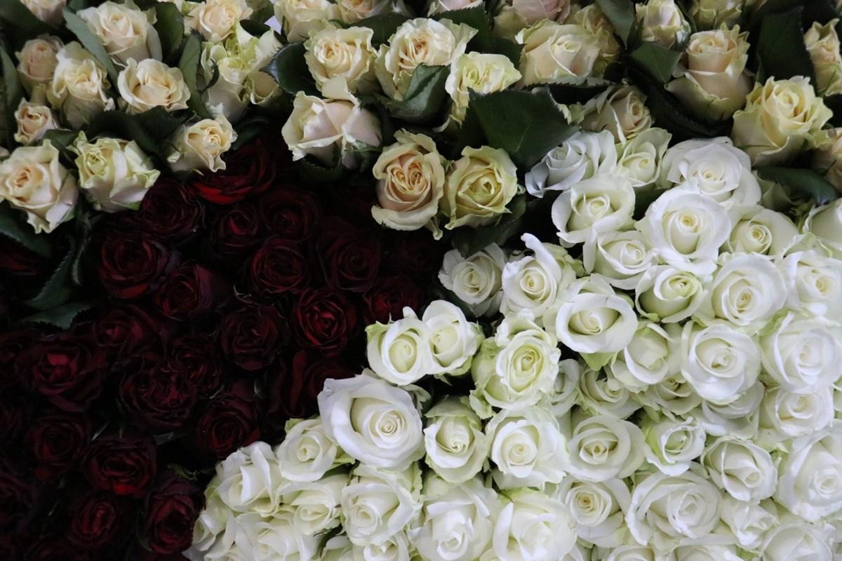 """Pandeminin vurduğu çiçekçilere """"Anneler Günü"""" dopingi"""