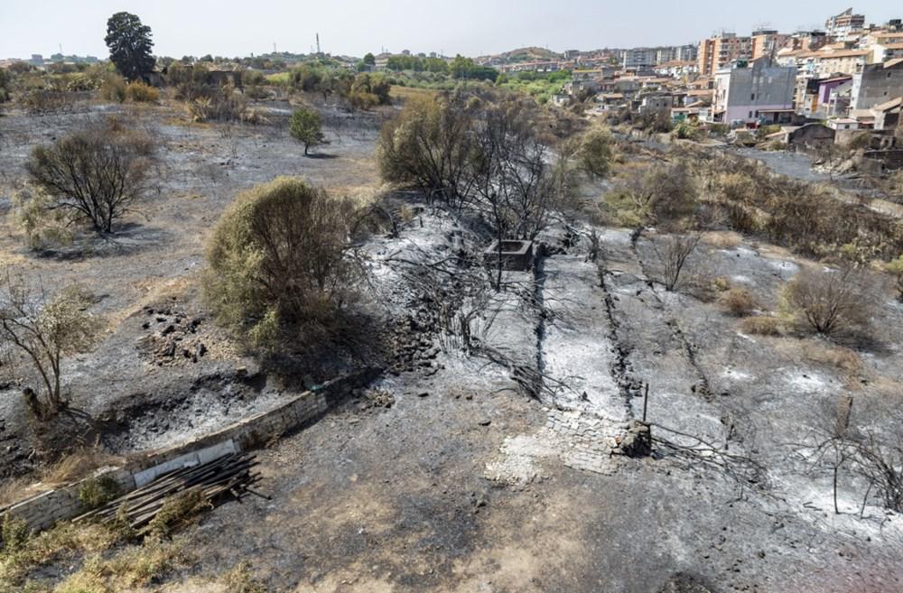 Akdeniz alev aldı: Yunanistan ve İtalya'da orman yangınları sürüyor - 11