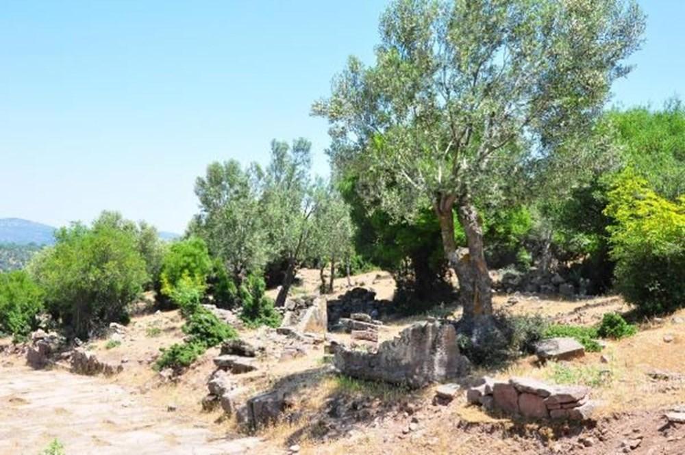 Aigai Antik Kenti'nde 3 bin mezar: Ortalama yaşam 40-45 yıl - 4
