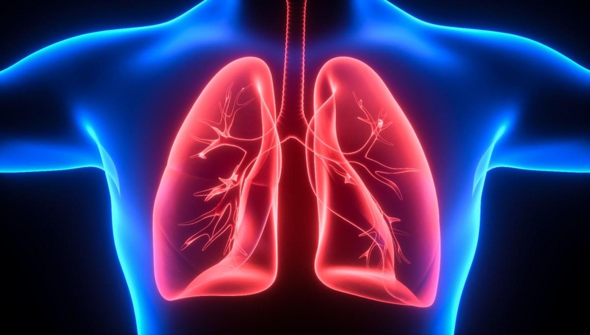 Covid-19 ilaç denemeleri: Yapay organ dönemi başlıyor