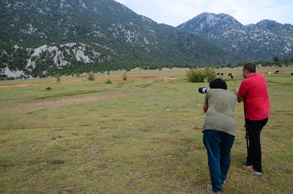 Soyları Osmanlı süvari birliğine dayanıyor! Torosların vahşi güzelliği 'Yılkı atları' - 11