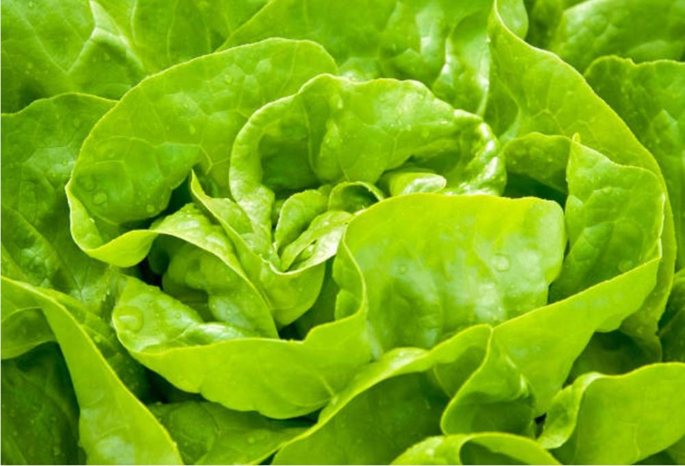 Meyve ve sebzeler hangi vitaminleri içeriyor? (Meyve ve sebzelerin besin değerleri) - 24