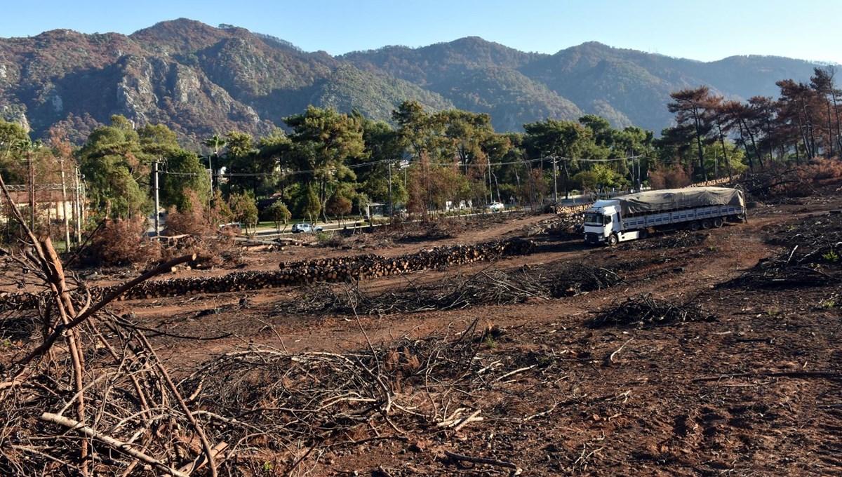 Marmaris'teki orman yangını: Zarar gören 13 bin 650 hektar alandan 500'ü temizlendi