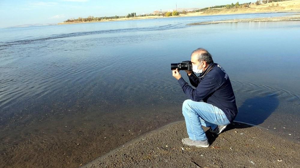 Van Gölü'nde flamingo şöleni - 3