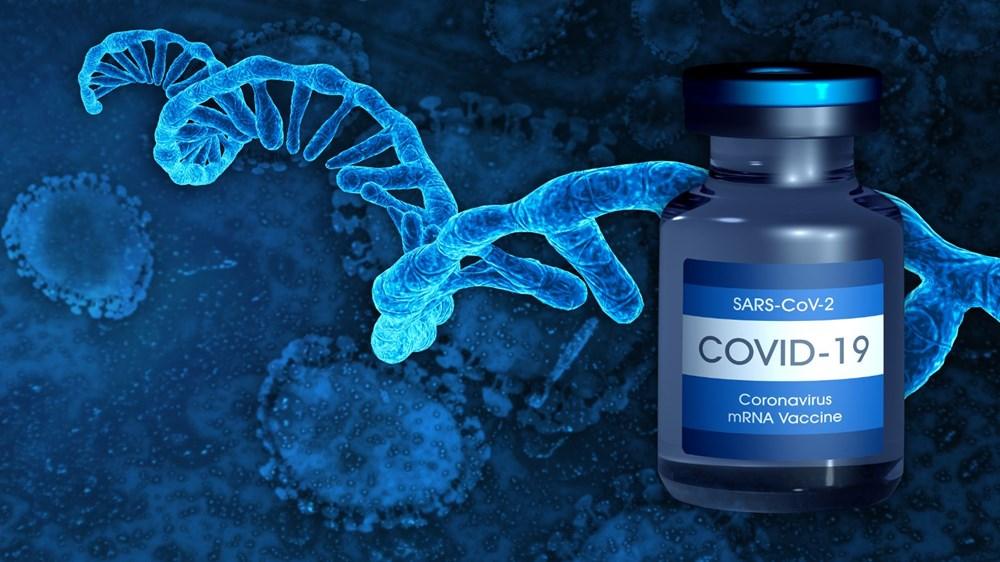 mRNA aşıları vücudun DNA'sını bozar mı? Covid-19 aşılarıyla ilgili efsaneler ve doğruları - 9