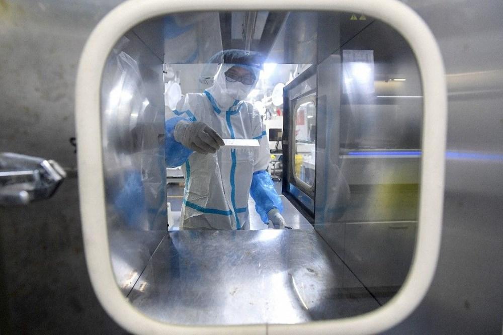 Çin, Covid-19'un kökeninin belirlenmesi amacıyla Wuhan'daki binlerce kan örneğini test edecek - 7