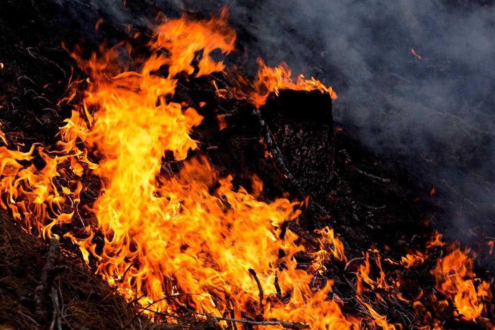 California'daki yangınlarda rekor - 3