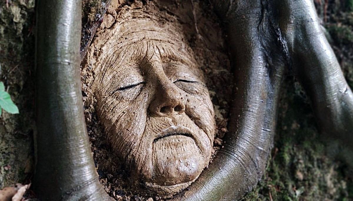 Ağaç köklerine heykel yaptı, 'Tarihi eser değil, heyecanlanmayın' yazısı astı