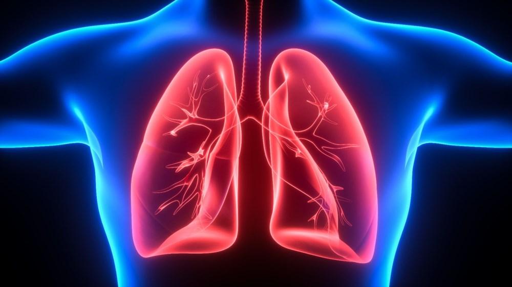 Covid-19 ilaç denemeleri: Yapay organ dönemi başlıyor - 3