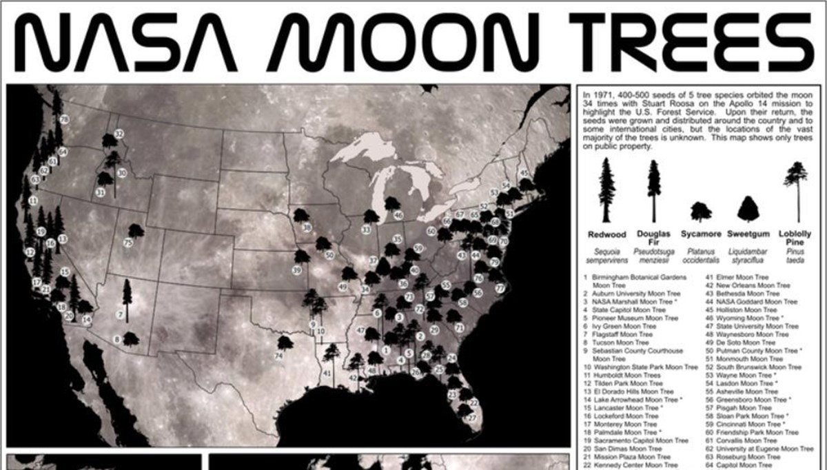 NASA published a map of lunar trees after 50 years