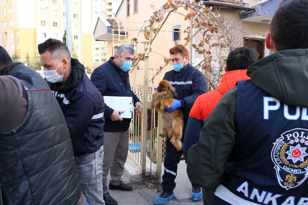 Ankara'da 'medyum'un evine baskın: 20 köpek ve 16 kediye el konuldu - 5