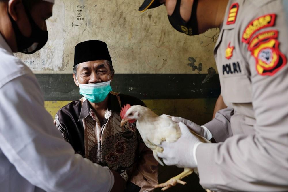 Hollanda'da ringa balığı, Adana'da kebap: Ülkelerin ilginç aşı teşvikleri - 5