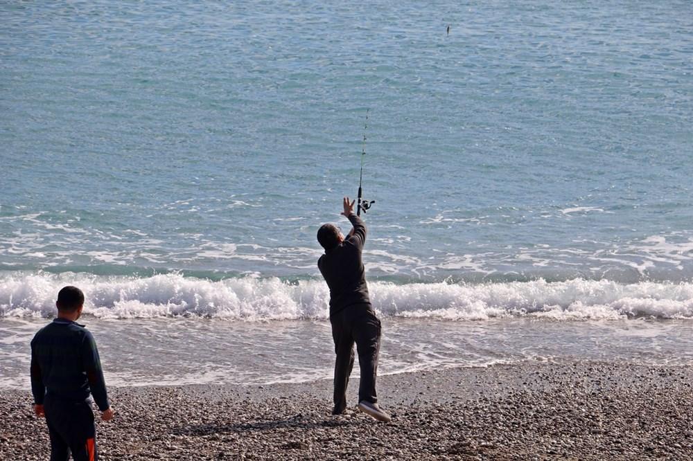 Olta balıkçılarının avlayıp denize attığı ölü balon balıkları fırtına sonrası sahile vurdu - 2