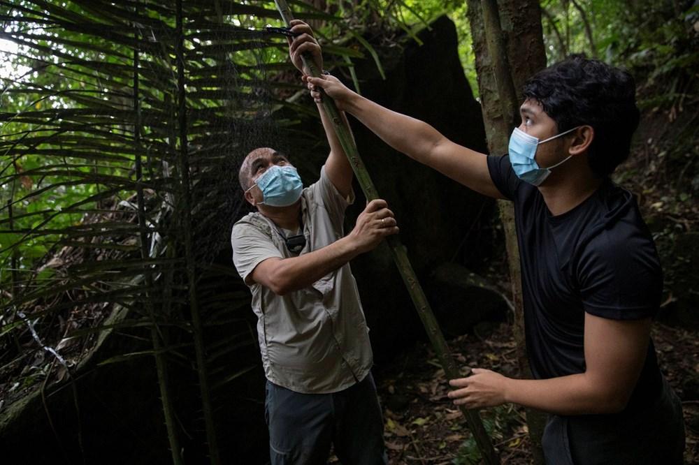 """""""Virüs avcıları"""" bir sonraki pandemiyi önlemek için gece gündüz çalışıyor - 4"""