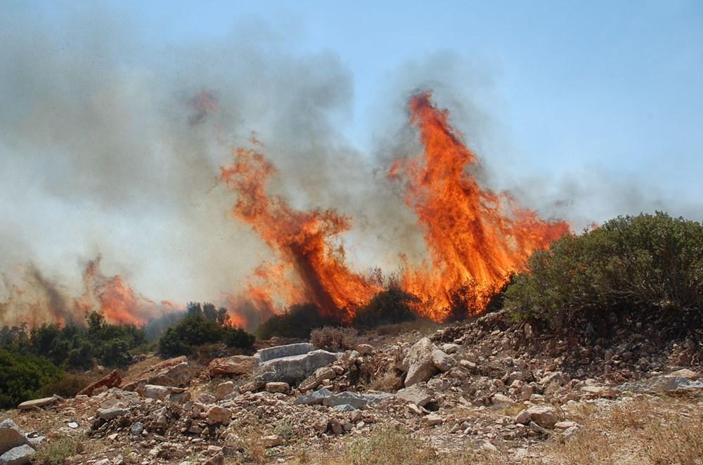 Antalya, Adana, Mersin,Muğla, Osmaniye ve Kayseri 'de orman yangınları - 37