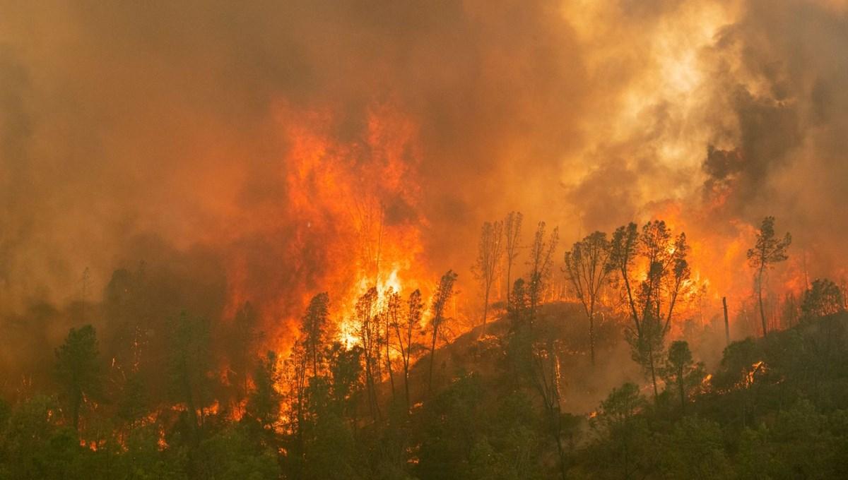 Kaliforniya'da devam eden yangınlarda 7 kişi hayatını kaybetti